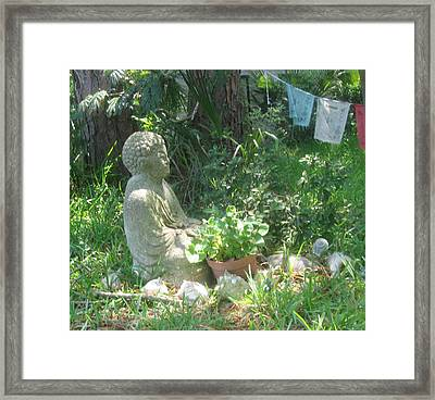 Buddha Framed Print by Juliana  Blessington