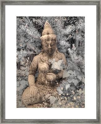 Buddha Nature Framed Print by Jane Linders