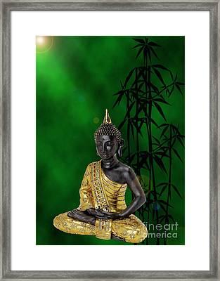 Buddha Of Knowledge Framed Print by Sandra Beikirch