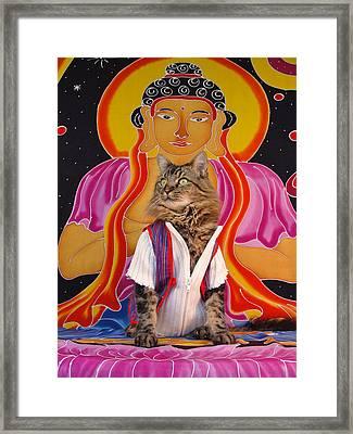 Buddhapuss Framed Print