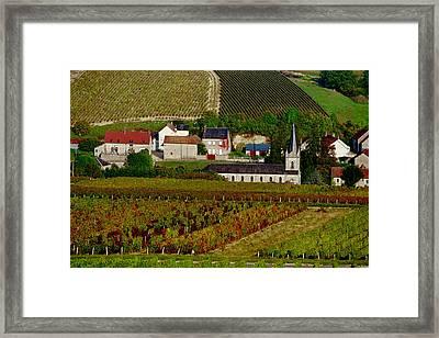 Bue Framed Print by John Galbo