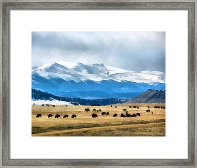 Buffalo Herd Painterly Framed Print by Ernie Echols