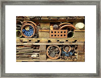 Bug Home Framed Print by Lee Rees