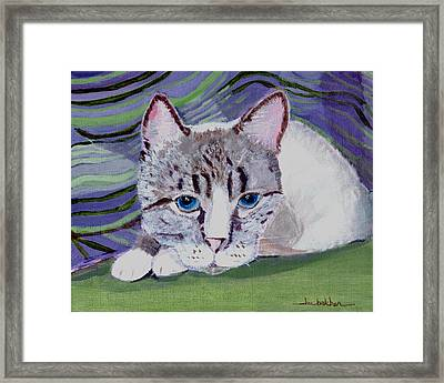 Bugsy's Quilt Framed Print by Lou Belcher