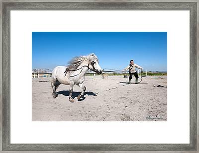 Bulgaria Horse Framed Print