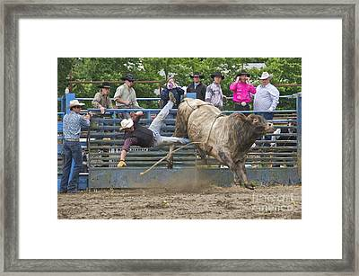 Bull 1 - Rider 0 Framed Print
