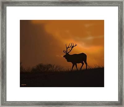 Bull Elk Frozen Sunset Framed Print