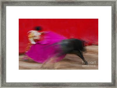 Framed Print featuring the photograph Bull Fighter - Mexico by Craig Lovell