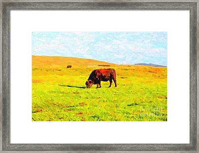 Bull Grazing In The Field Framed Print by Wingsdomain Art and Photography