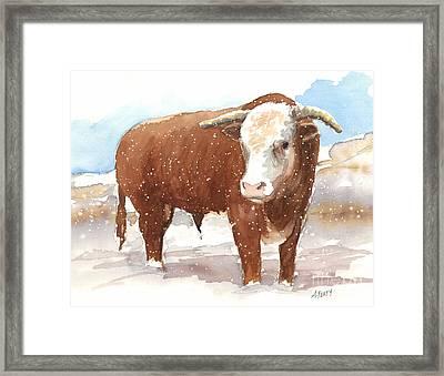 Bull Market Framed Print
