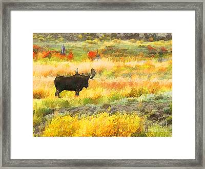 Framed Print featuring the photograph Bull Moose by Clare VanderVeen