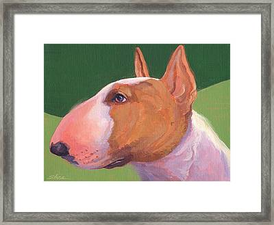 Bull Terrier Framed Print by Shawn Shea