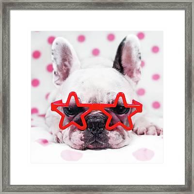 Bulldog With Star Glasses Framed Print by Retales Botijero