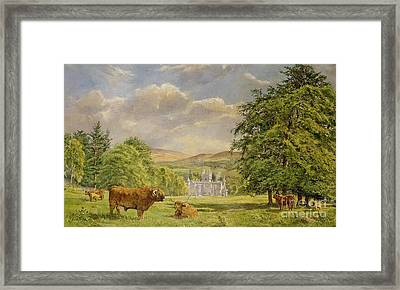 Bulls At Balmoral Framed Print by Tim Scott Bolton