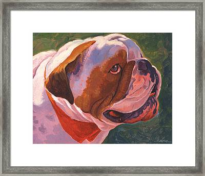Bully For Me Framed Print by Shawn Shea