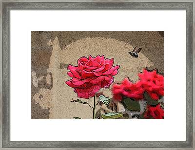 Bumble Bee And Rose Framed Print by Donna  Smith