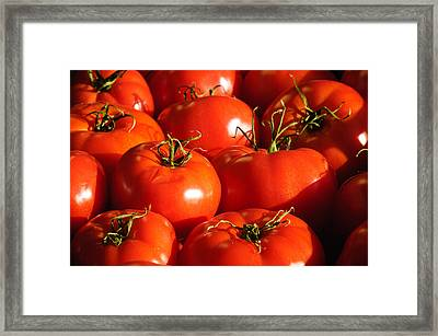 Bunch Of Tomatoes Framed Print by Connie Cooper-Edwards