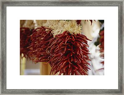 Bunches Of Colorful Chili Peppers Framed Print
