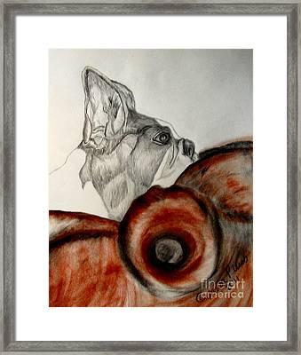 Bundled In Blankets Framed Print by Maria Urso