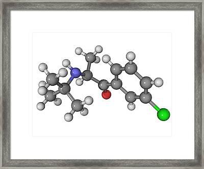 Bupropion Antidepressant Drug Molecule Framed Print by Laguna Design