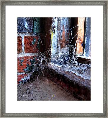 Burial Ground  Framed Print by Tammy Cantrell