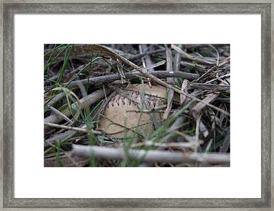 Framed Print featuring the photograph Buried Baseball by Stephanie Nuttall