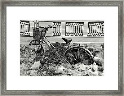 Buried In The Snow Framed Print