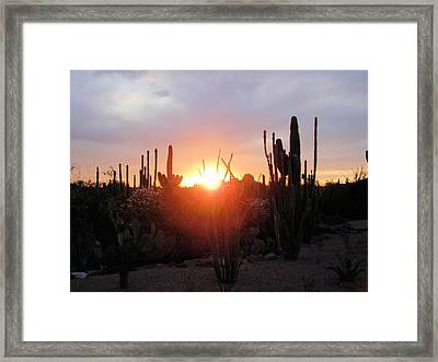 Burning Horizon Framed Print by