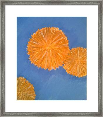 Burst Framed Print by Holly  Varner