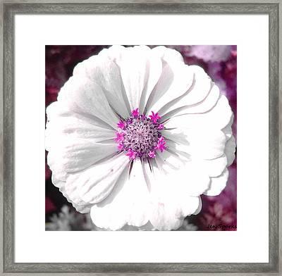 Burst Of Color Framed Print by Jen Sparks