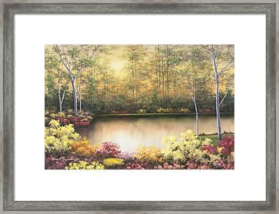 Bursting In Autumn Framed Print by Diane Romanello