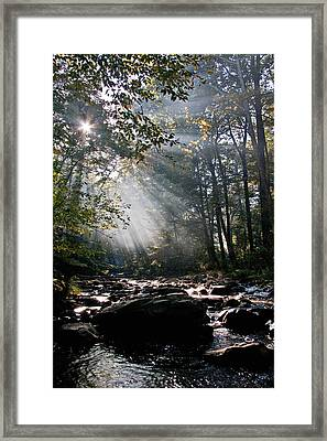 Bursting Through Framed Print