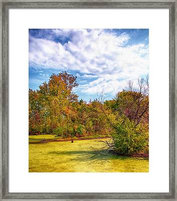 Busch Wildlife Swampy Autumn - 2 Framed Print by Bill Tiepelman