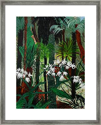 Bush Beauty Framed Print