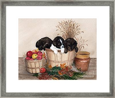 Framed Print featuring the painting Bushel Of Fun  by Nancy Patterson
