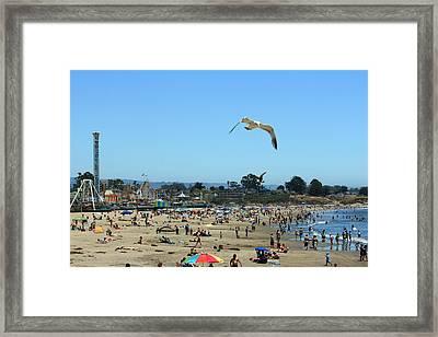 Busy Beach Framed Print by Wendi Matson