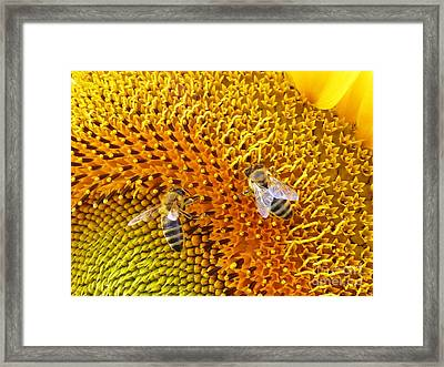 Busy Bees Framed Print by AmaS Art