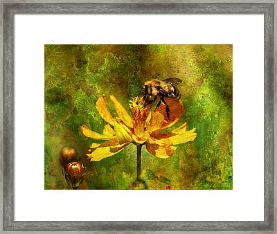 Busy Busy Honey Bee Framed Print
