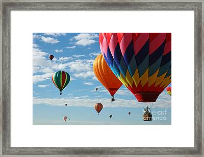 Busy Times Framed Print by Vivian Christopher