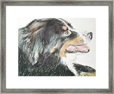 Framed Print featuring the drawing Buttercup The Wonderdog by Beth Saffer