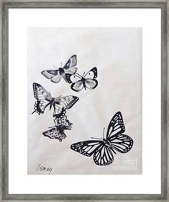 Framed Print featuring the drawing Butterflies And Moths by Rod Ismay