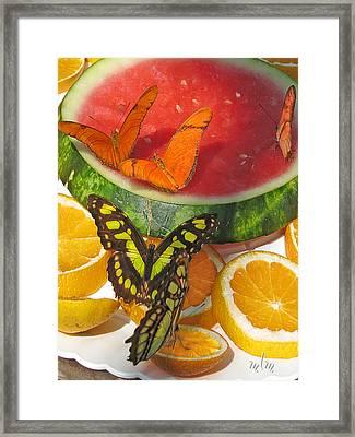 Butterflies At Dinner Framed Print