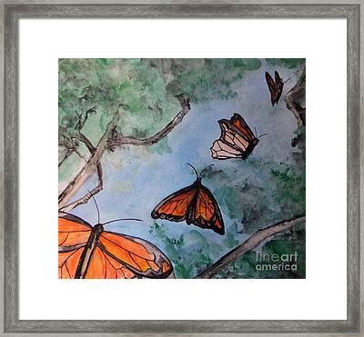 Butterflies Framed Print by Jana Barros