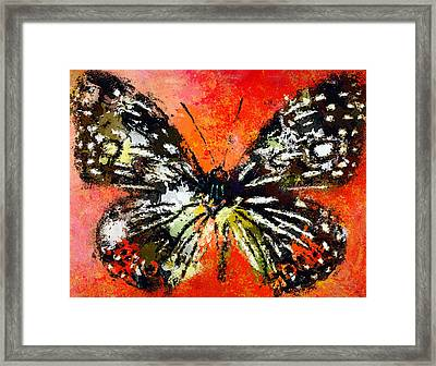 Butterfly 3 Framed Print by Yury Malkov
