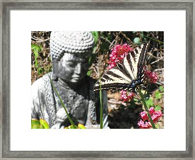 Framed Print featuring the photograph Butterfly And Buddha by Sue Halstenberg