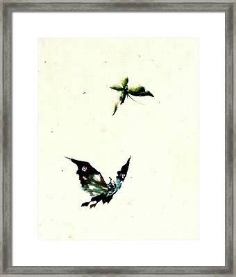 Butterfly And Moth 1840 Framed Print by Padre Art