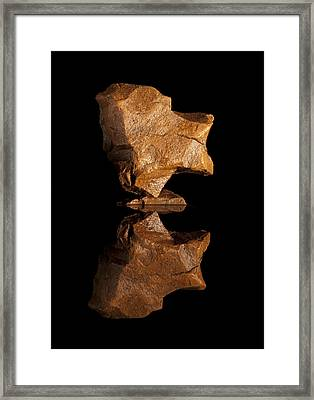 Butterfly Framed Print by Arlyn Petrie