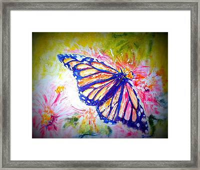 Butterfly Beauty 3 Framed Print by Raymond Doward