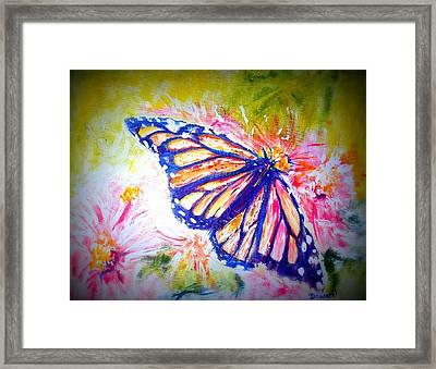 Butterfly Beauty 3 Framed Print by Raymond Doward