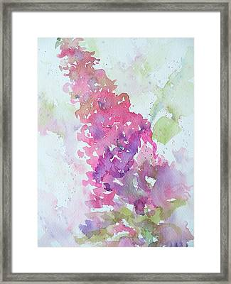 Butterfly Bush Plein Air Framed Print by Sandy Collier